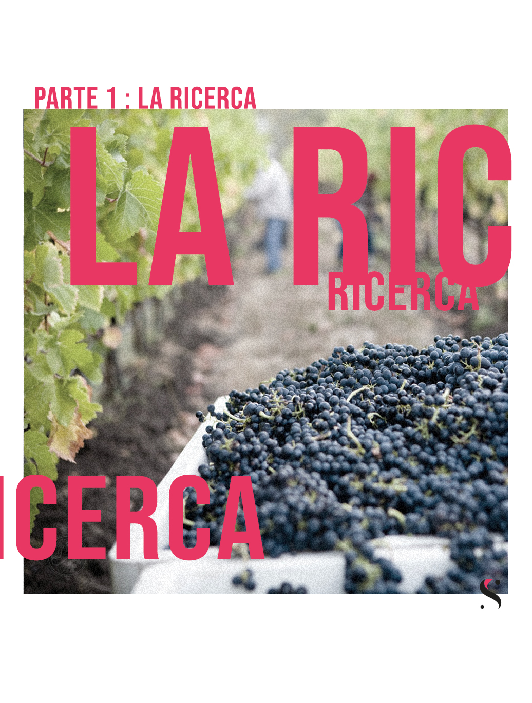 Ricerca marketing del vino